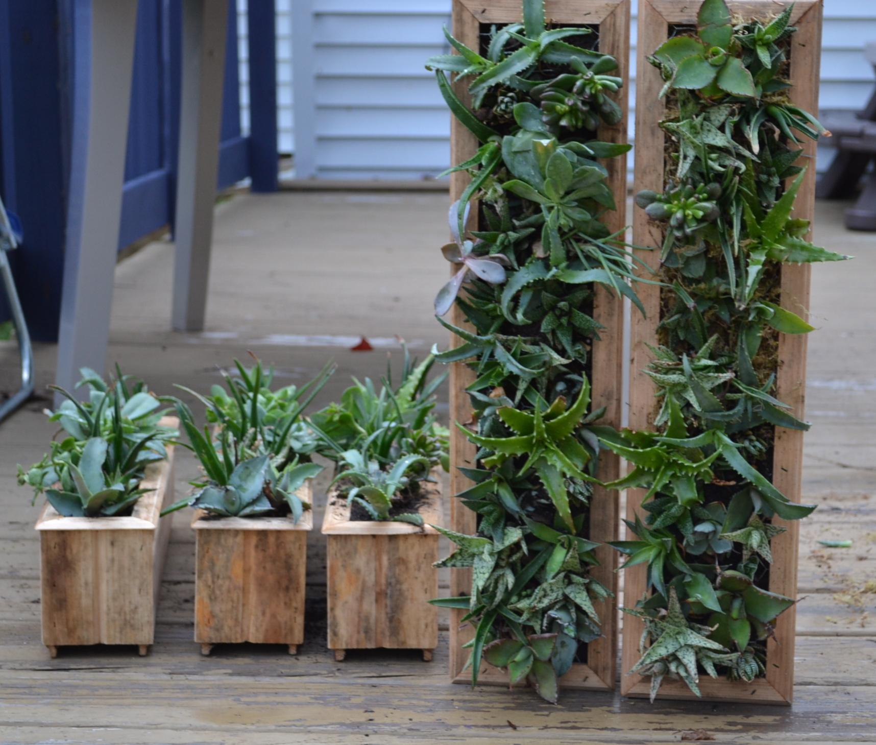 Planters: Solarpoweredkate